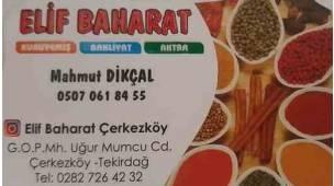 Elif Baharat