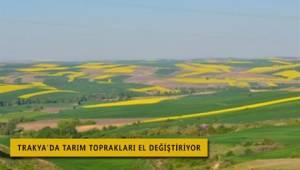 Trakya'da Tarım Arazileri Birileri Tarafından Alınıyor.