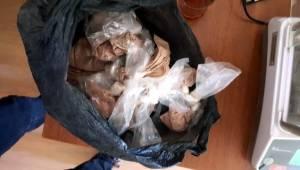 Tekirdağ'da Uyuşturucu Operasyonunda 13 Gözaltı