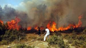 Tekirdağ Genelinde Ormanlara Giriş Yasakları Uygulanıyor