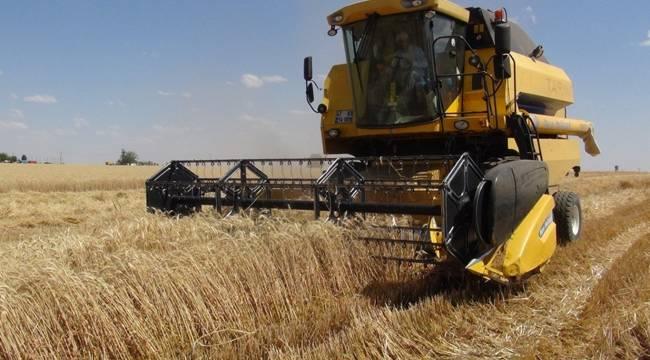 Toprak Mahsulleri Ofisi Buğday Alımına Başladı