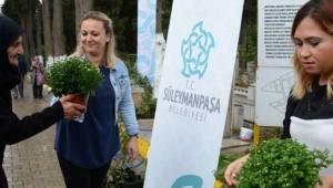 Süleymanpaşa'dan Bayramda Mezarlıkları Çiçeklerle Süsledi