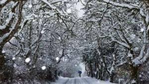 Tekirdağ 30 Günlük Hava Tahminleri | Son Dakika Tekirdağ Haber