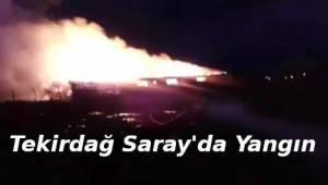 Tekirdağ'da Çıkan Yangın Vatandaşı Korkuttu | Son Dakika Tekirdağ Haber