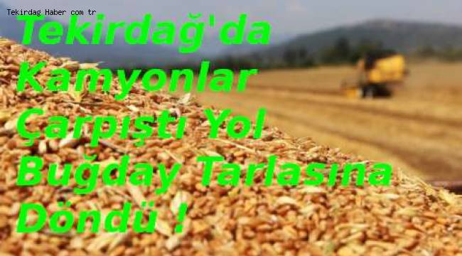 Tekirdağ Saray'da Kamyonlar Çarpışınca Yol Buğday Tarlasına Döndü | Son Dakika Tekirdağ Haberleri