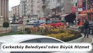 Çerkezköy Belediyesi'nden Büyük Hizmet - Tekirdağ Haber
