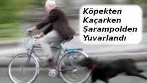 Köpeklerden Kaçmak İsteyen Bisikletli Adam Şarampolden Düştü - Tekirdağ Haber