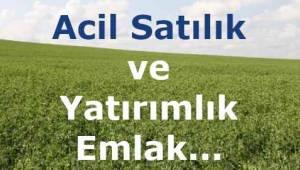 Tekirdağ Çerkezköy ve Kapaklı'da Değerinin Altında Yatırımlık Acil Satılık Tarla ve Arsalar