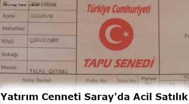 Tekirdağ Saray Çukuryurt Tilki Çatağında Yatırımlık 5 Bin Metrekare Tarla Acil Satılık!