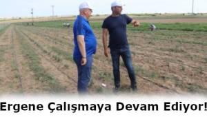 Ergene Belediyesi Tarımsal Yatırımı Vatandaşla Paylaşacak!