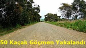 Tekirdağ'ın Süleymanpaşa İlçesinde 50 Düzensiz Göçmen Yakalandı!