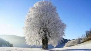 Tekirdağ'a Kar Yağacak mı? 2020 Hava Tahminleri