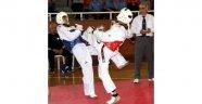 Anadolu Yıldızlar Taekwondo Türkiye Şampiyonası