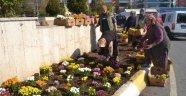 Çerkezköy Çiçek Açıyor